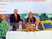 胡志明市与荷兰加强农业与信息技术合作