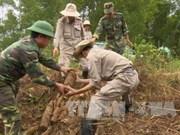 """美国""""越南和平树组织""""代表团访问越南"""