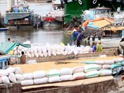 越南九龙江三角洲地区吸引外商直接投资下降