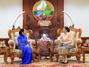 越老加强两国各省市之间友好合作关系