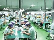 一季度欧盟向越南注资215.63亿美元
