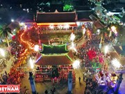 越南南定省瑞府庙会(组图)