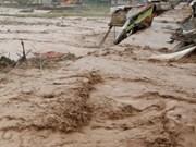 印尼西部发生洪灾 致使2人死亡
