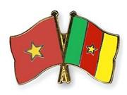 越南与喀麦隆深化多方面合作