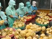 越南农产品:机遇与挑战并存