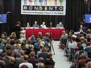 海牙国际法庭裁决孟山都公司破坏环境罪成立