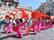 越南参加2017年捷克少数民族文化节