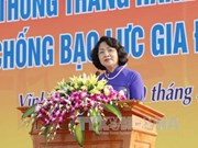 越南反家暴行动月宣传计划正式启动
