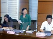 越南第十四届国会第三次会议:确保龙城国际航空港建设项目施工进度