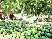 越南庆和省拟建高科技农业园区