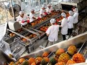 越南蔬果出口活动的机遇与挑战