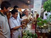 广南省首次举行玉玲山人参文化节   努力对外推广该省重要药材