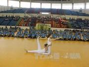 第三次国际瑜伽日在越南全国9个省市举行