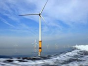 UPC Ranewables风电总公司对越南薄辽省的投资项目进行实地考察