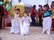 2017年越南家庭日:多项活动丰富上演