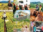 世行向越南提供1.53亿美元贷款 协助越南实施扶贫计划