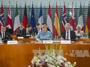 旅居欧洲越南人建议将东海问题列入二十国集团峰会的议程