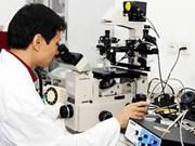 乂安省吸引高科技工业项目