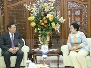 越南与印尼深化战略伙伴关系