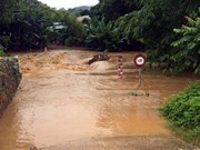 四号台风登陆  越南中部各省受灾严重