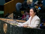 """越南支持在""""两国方案""""的基础上解决巴以争端"""