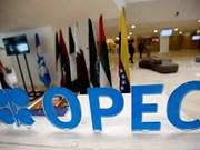 印尼考虑重新加入石油输出国组织