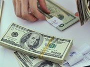 28日越盾兑美元中心汇率上涨3越盾