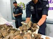 马来西亚起获23根走私象牙和300公斤穿山甲鳞片