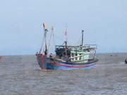 越南强烈反对对渔民使用武力或以武力威胁渔民的行为