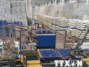越南对进口DAP和MAP化肥产品征收临时保障措施税