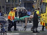 越南领导人就西班牙巴塞罗那恐怖袭击事件向西班牙领导人致慰问电