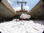 2017年越南大米出口有望达到520万吨