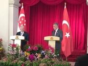 新加坡和土耳其双边自贸协定10月生效
