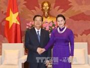 越南国会主席阮氏金银会见老挝和平与团结委员会代表团