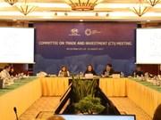 APEC贸易投资委员会会议:越南提出关于促进跨境电子商务便利化倡议