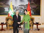 越共中央对外部部长:阮富仲总书记访问印缅 为双边关系注入新动力