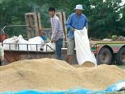 泰国仍成为世界第一大米出口国