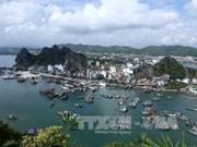 广宁省将云屯特别经济行政区建设成绿色海洋岛屿城市