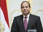 """越南在埃及""""向东""""政策中占据优先地位"""
