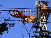 岘港市举行大面积停电应急演练  确保APEC会议安全可靠供电