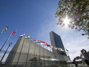 越南-联合国 40年合作的烙印