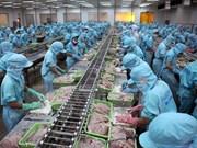 中国正在成为越南查鱼的潜在市场