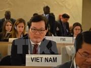 越南为世界和地区促进和保护人权做出贡献