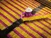 推动传统手工艺村旅游发展