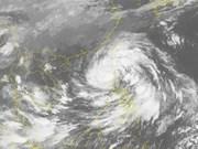 越南主动应对第11号台风