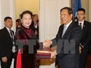 越南国会主席阮氏金银会见中国全国人大常委会副委员长张平