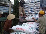 每年越南肥料出口量约达800万吨