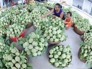 2017年北部山区与丘陵地区贸易农业展销会在北江省举行