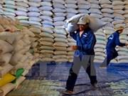 越南大米出口活动:重点市场带来的机会