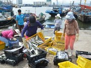 今年前10个月越南水产品出口额约达67.3亿美元